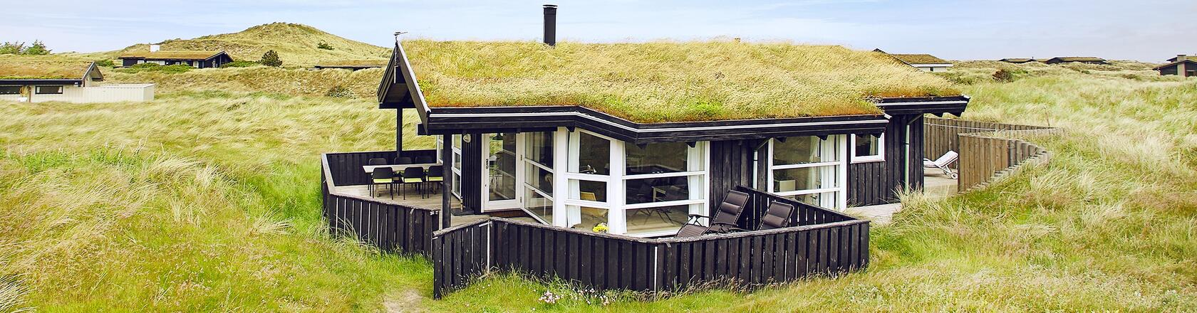 Holiday home in Skagen - choose between a variety of houses